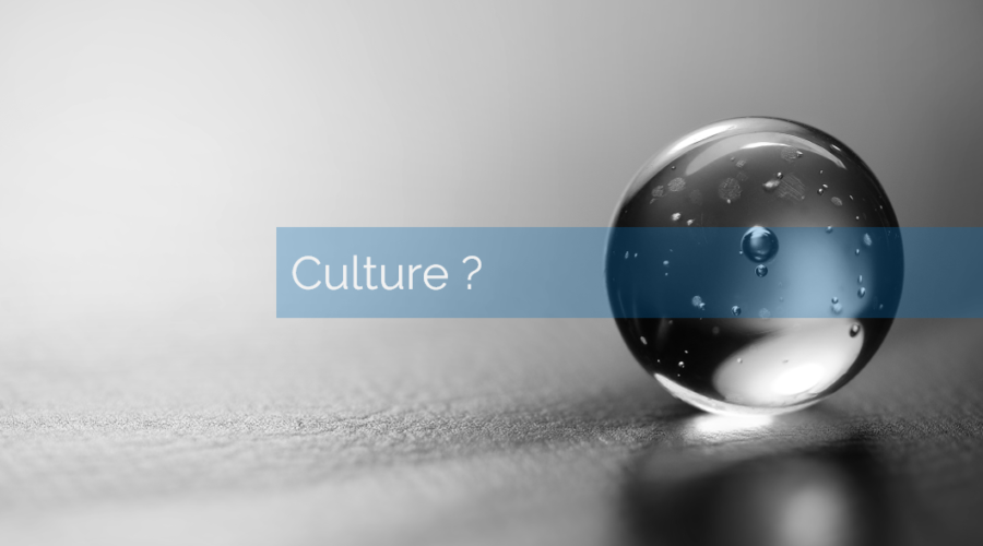 Par quel bout aborder la transformation digitale ? épisode 1: par la culture ?